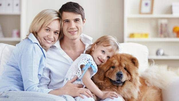Wills & Trusts dog-young-family Direct Wills Selly Oak